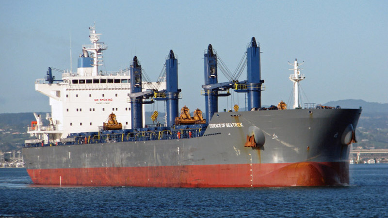 Essence of Seatrek bulk carrier